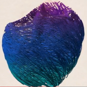 This computational model of the heart was developed at the Barcelona Supercomputing Center. Image from the Visual.ly blog.