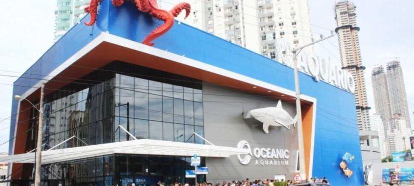 Oceanic Aquarium: Você conhece o maior aquário em Balneário Camboriú?