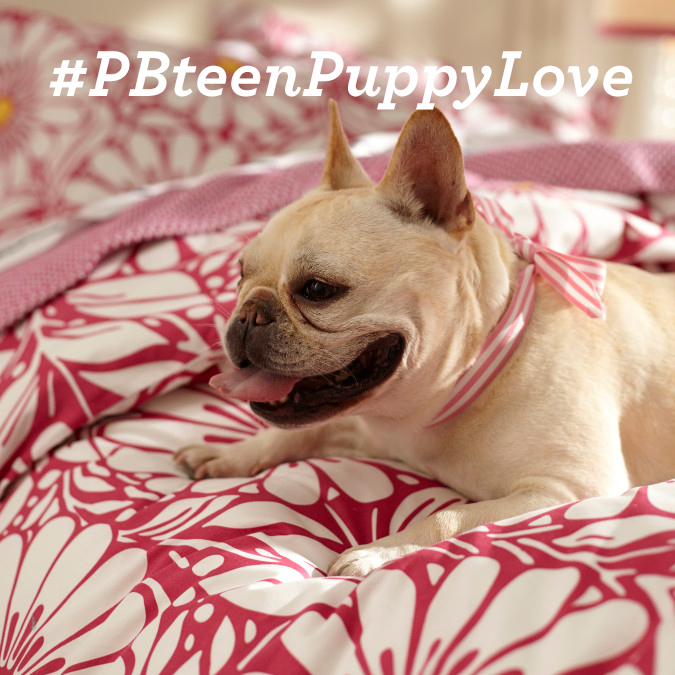 #PBteenPuppyLove