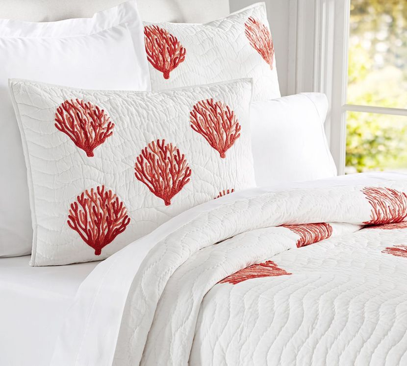 coral bed 2