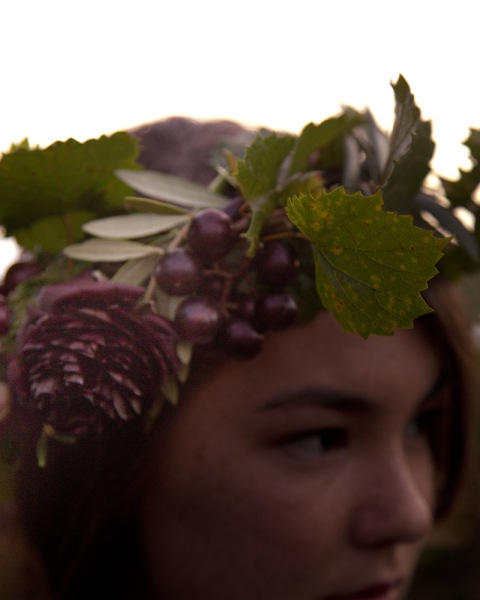 wine_country_engagement_flower_crown