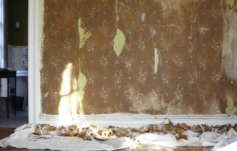 HOB_PotteryBarn_YD_Wallpaper_removal