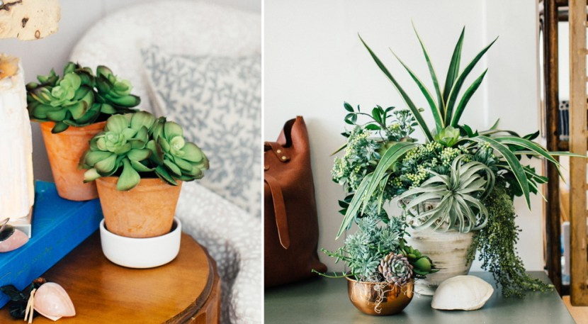 How To Create Unique Amp Beautiful Succulent Arrangements