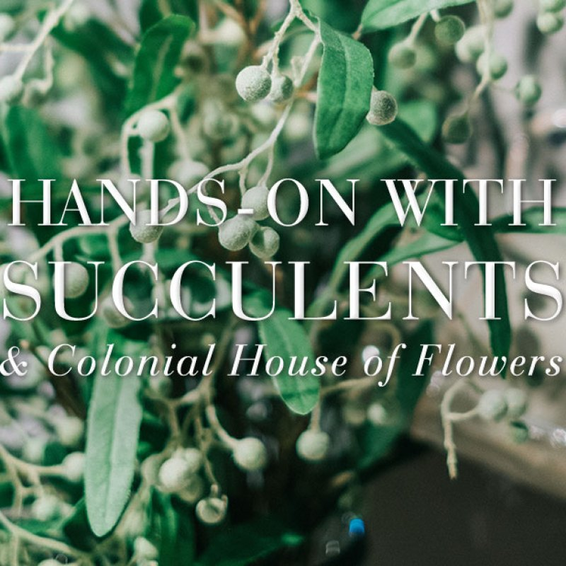 Getting Hands-On with Succulents with Colonial House of Flowers