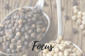 focus pourdebon