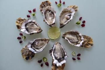 huîtres pourdebon