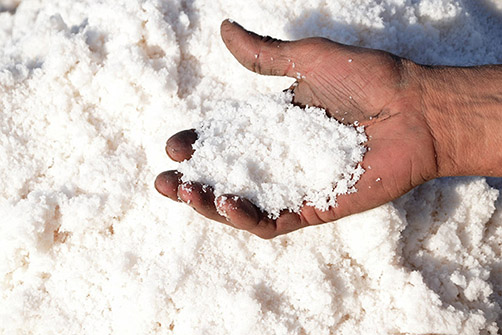 Le rôle du sel dans la nourriture