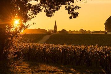 Tout savoir sur les vins de Bordeaux !