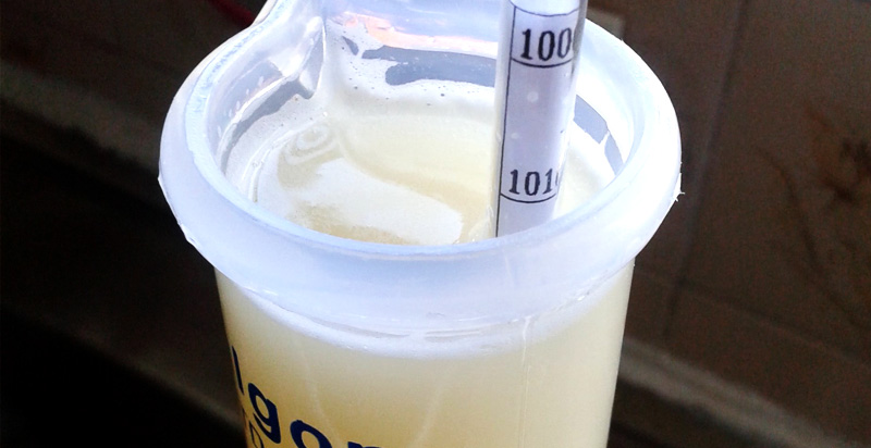 Densímetro para Cerveja Artesanal