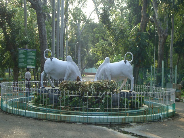 Botanical Garden-Pondicherry