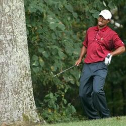 Tiger Woods Underwent More Procedures after Car Accident