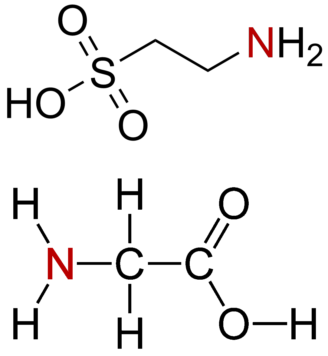 Amino Acid Spiking Scam Is Your Protein Really Protein