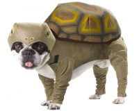 10 Dog Costumes You Won't Believe