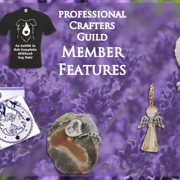 Sapphire Guild Member Features – July 2019 Part 1