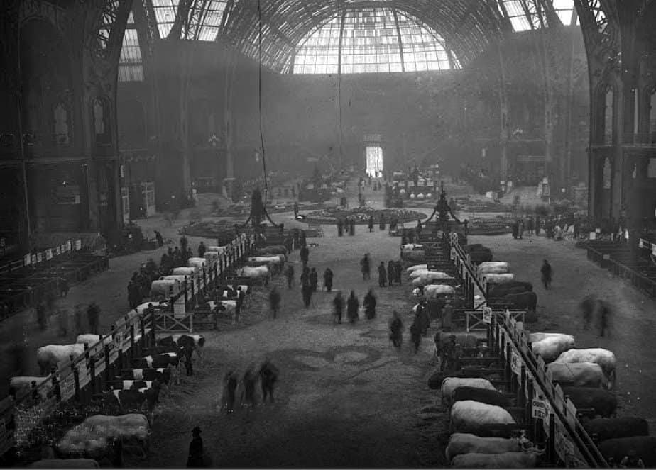 Attraction touristique - Paris