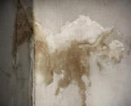 Pared interior yeso y hormigón  con manchas