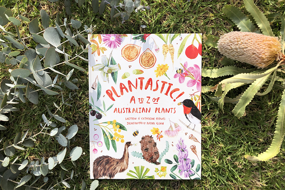 Copy of Plantastic! book on grass, surround be leaves and banksia flower