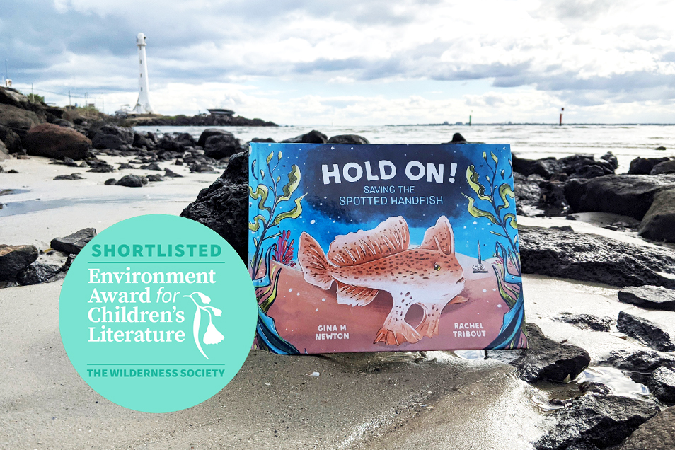 Front cover of Hold On! book on rocky coastline with award logo in foreground