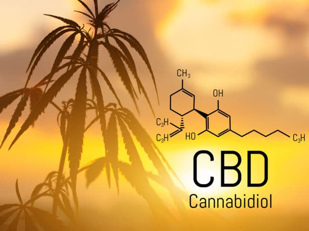 CBD Levels In Products May Not Be What They Say, New Digital Citizens Alliance Research Finds