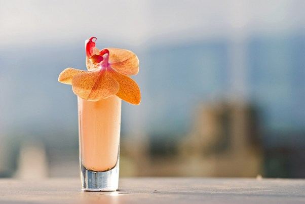 Cocktail in the sun
