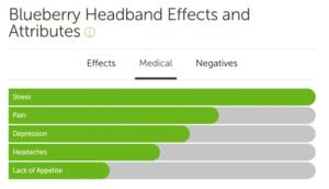 Blueberry Headband Medical Effects