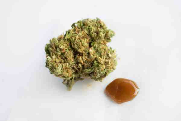 What is Rosin?
