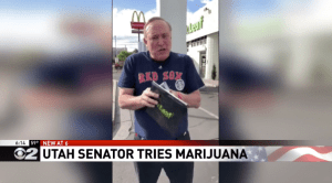 Utah Marijuana Consultants