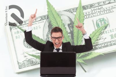 win a cannabis license in california