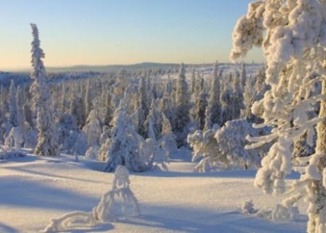 Hoteles en Finlandia