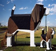 Hotel-perro en Estados Unidos