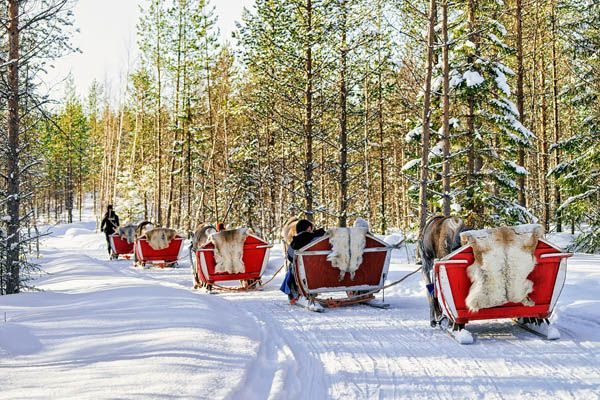 Viajar a Laponia en Navidad