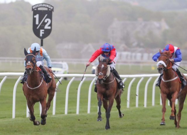 KUPA RIVER Ridden by Ben Curtis wins at Musselburgh 3/5//19 Photograph by Grossick Racing Photography