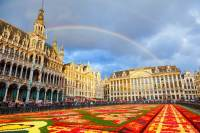 Brussels Flower Carpet: the Grand Place in all its glory ...