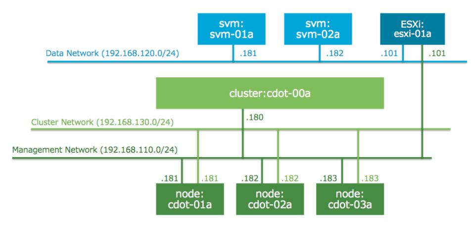 logical network for clustered data ontap
