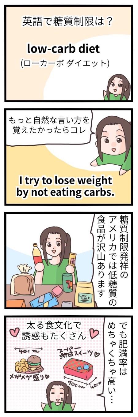 糖質制限 英語