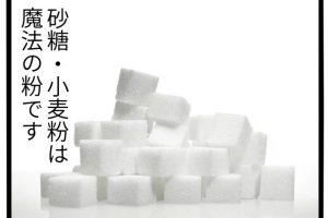 健康食品 糖質制限
