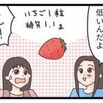 いちご イチゴ 苺 糖質制限