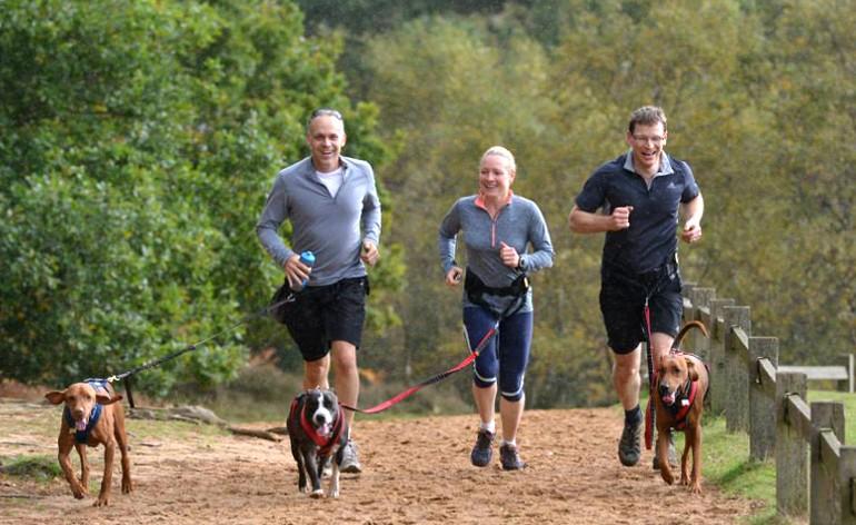 Correr con tu mascota un placer que repetirás todos los días