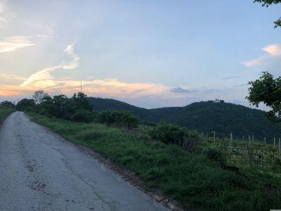 Der Eichelhofweg mit Sonnenuntergang über dem Wienerwald und der Leopoldsburg am Leopoldsberg.