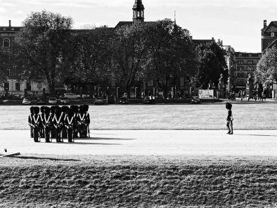 Wachablöse Rosenborg