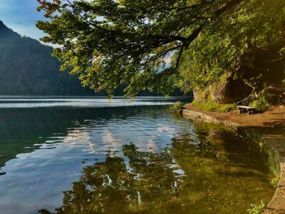 Ufer des Hechtsees mit Parkbank