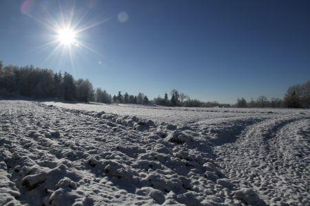 Schneefeld