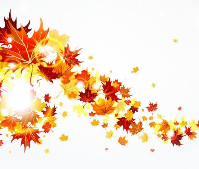 The Fall The Season Not The Show