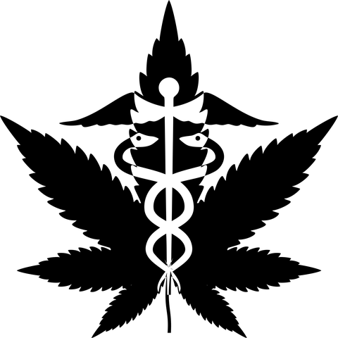 27 Black-Owned Cannabis Clinics You Should Know About