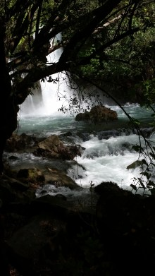 Israel-D11-waterfall