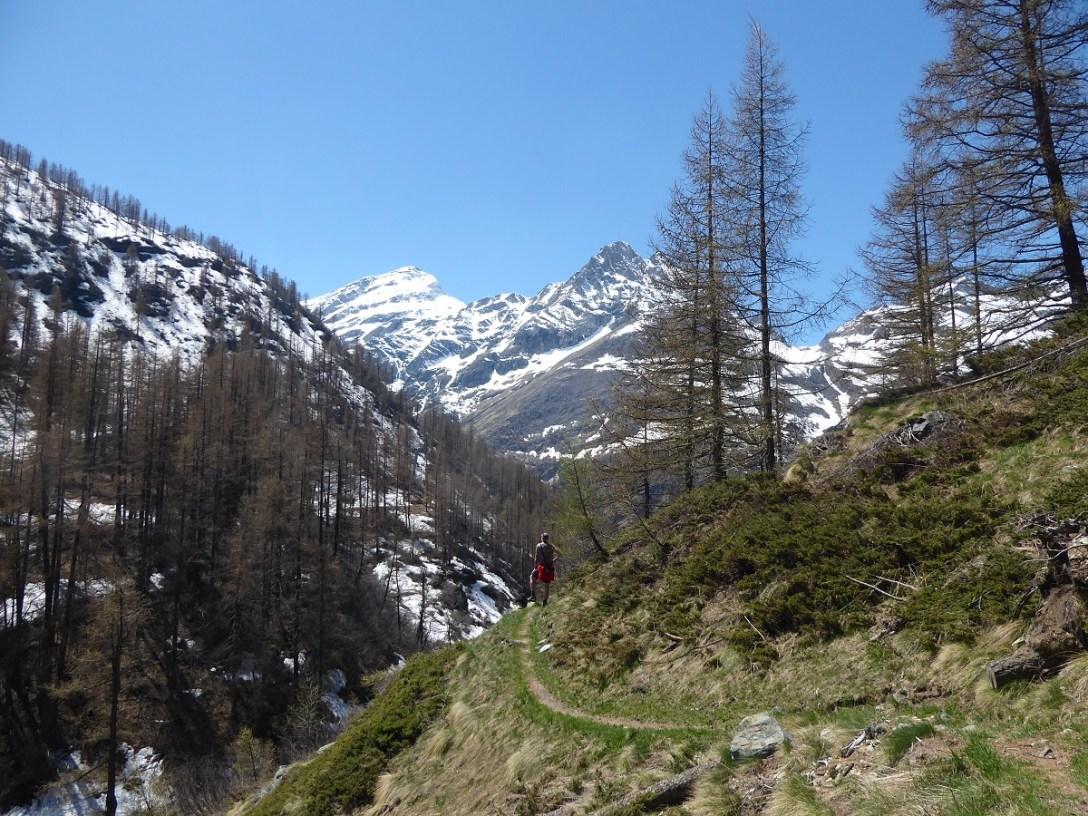 Hiking_alps