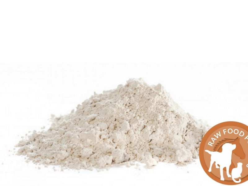 What is Diatomaceous Earth? 2