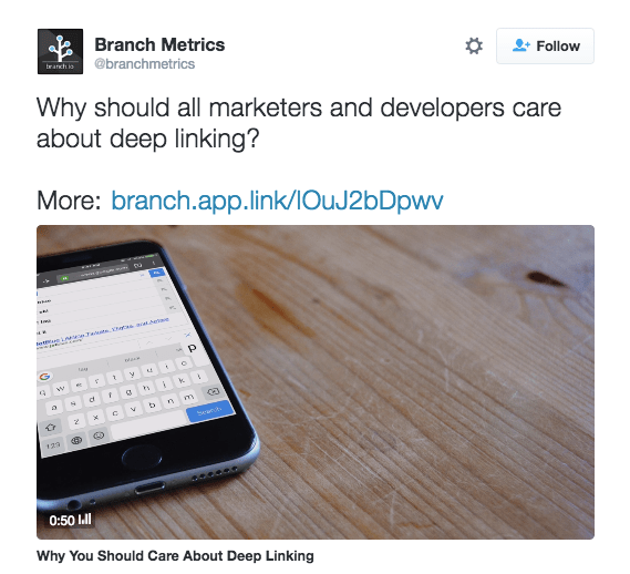 Branch Metrics Branded Link in Tweet