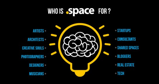 Who is the Space Domain Extension for?