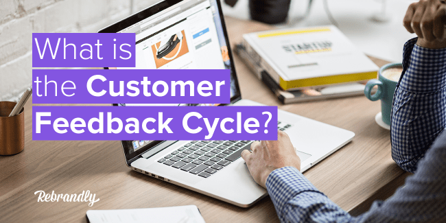 customer feedback cycle